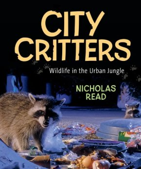 citycritters