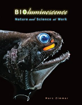Bioluminesce (cover)