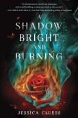 a-shadow-bright