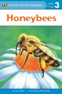 honeybees by joyce