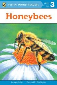honeybees by joyce
