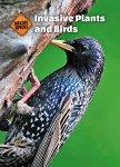 invasive plants and birds